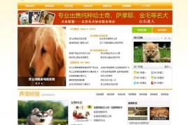 爱宠网-爱上的宠物网站:www.aichong.cn