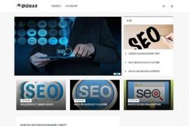 SEO优化搜索引擎快速优化-大志SEO博客:www.1602.cn