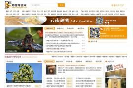 知花蜂蜜网-蜂蜜行业门户网站:www.zhfengmi.com