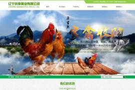 笨鸡苗批发-鹅苗批发-辽宁共享禽业有限公司:www.qinleiwang.cn