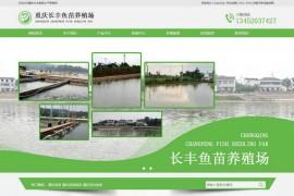 重庆淡水鱼苗批发-重庆长丰鱼苗水产养殖场:www.cqcfym.com
