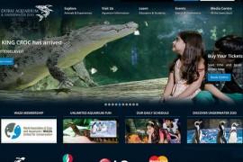 DubaiAquarium:迪拜海洋水族馆:www.thedubaiaquarium.com