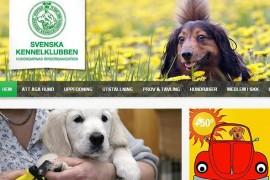 skk 瑞典养犬俱乐部: www.skk.se