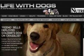 LIFE WITH DOGS|爱心伴侣:www.lifewithdogs.tv