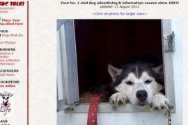 SLED DOG CENTRAL|雪橇狗狗中心:sleddogcentral.com