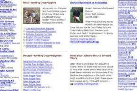 GUN DOG BREEDERS 猎犬饲养员: www.gundogbreeders.com