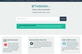 Twdown 在线Twitter视频下载器:twdown.net