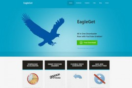 EagleGet:免费HTTP下载工具:www.eagleget.com