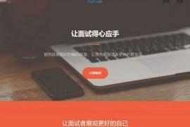 iNstcode|在线程序员代码面试平台:instcode.top