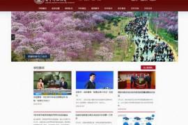 华中科技大学|综合研究型大学:www.hust.edu.cn