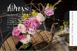 Lohas|乐活生活方式杂志:www.ilohas.com