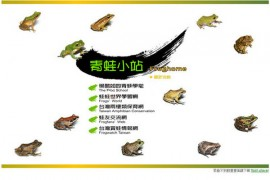 FrogHome:青蛙小站自然科学网:www.froghome.com.tw