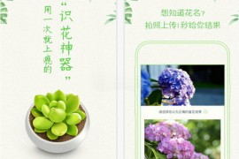 形色植物拍照识别应用:www.xingseapp.com